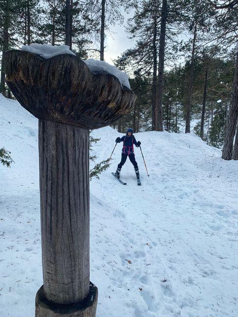 Hochimst Skitour 02 1